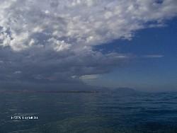 Reise 2007 - Taiki, litle Nick an No Name  Whale-Watching in Kaikoura
