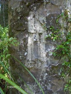 Reise 2007 - Puketi-Maninangina Kauri walk