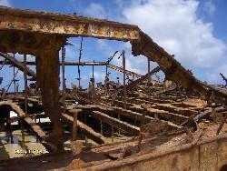 Reise 2007 - Frazer Island