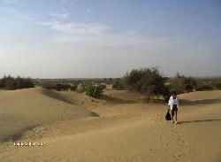 Reise 2008 -Abenteuer Indien